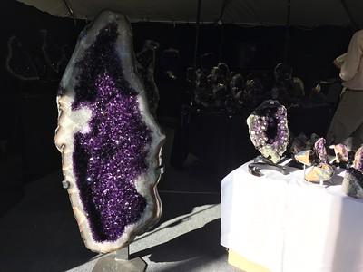Tucson Gem, Fossil & Mineral Show 2017