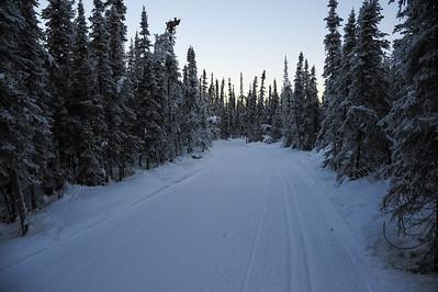 UAF Ski Trails