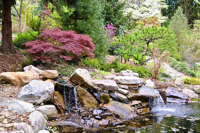 UNC Charlotte Botanical Gardens In Spring. Read More