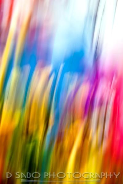 Flower Paint Brushes