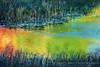 A Pond Kaleidoscope