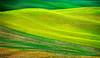 Tidal Waves of Grain