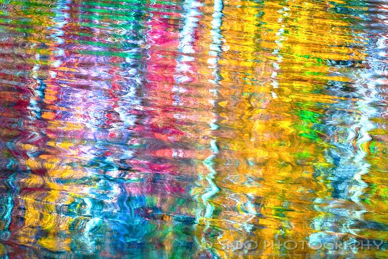 Appalachian Painter's Palette
