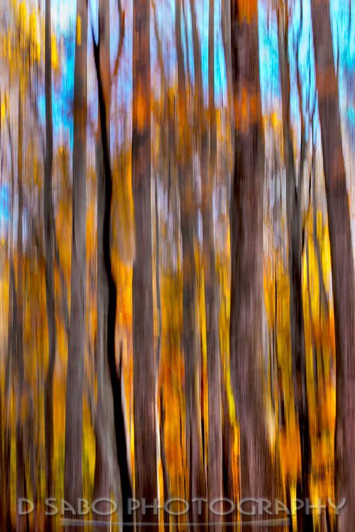Forest Slim Jims