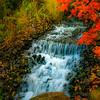 Stream in the Rock Garden