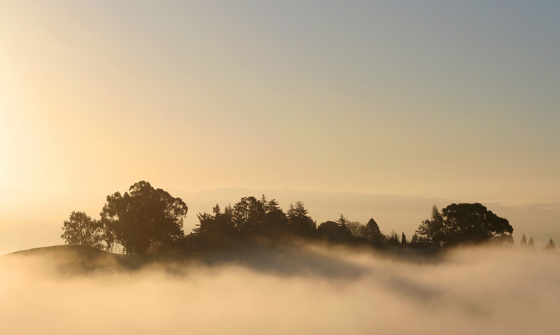 Fog on Ridge