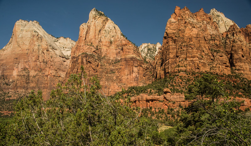 The Patriarchs, in Zion.
