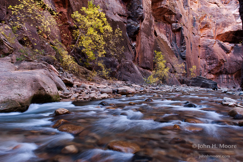 Rapids and fall folliage along the Virgin River Narrows in Zion National Park