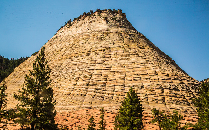 Part of Checkerboard Mesa, in Zion.