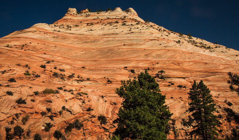 Salmon colored sandstone mountain in Zion.