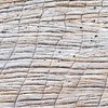 Detail of a cracked granite wall in Zion National Park, Utah.