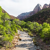 The Virgin River in Zion National Park, Utah.