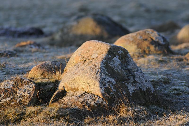Sten i morgonljus, Torhamnsudde