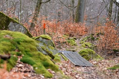 Skärva Naturreservat,