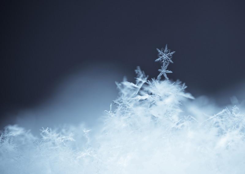 dancing snowflake 2
