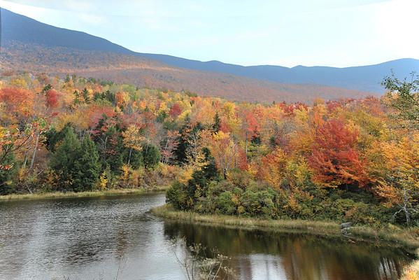 Beaver Pond Buel's Gore , VT