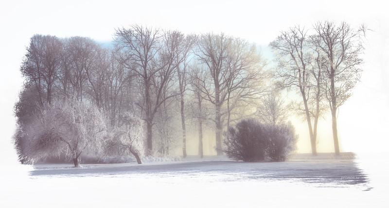 """""""Garden of Winther""""  <i>- Enter the garden of Winther and step into a world of fantasy</i>"""