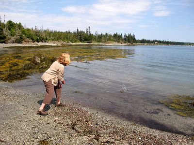Crab Tree Point - August 2014