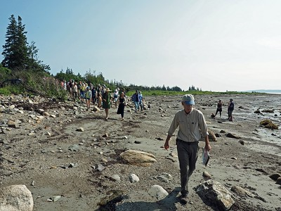 Geology Walk - August 2018