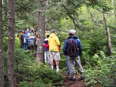 Granite Island Tree Walk - July 2015