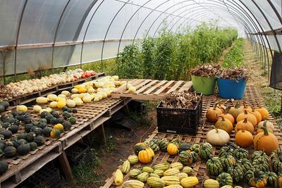 Sparkplug Farm Visit - September 2016
