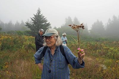 Wildflower Walk with Janet - July 2018