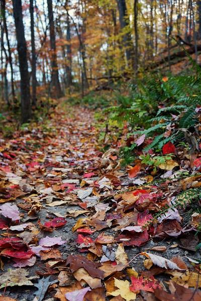 Leesylvania State Park