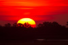 Rising Sun<br /> Chincoteague Sunrise Chincoteague NWR Virginia