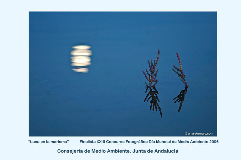 """""""Luna en la marisma"""" <a href=""""http://www.juntadeandalucia.es/medioambiente/site/web/menuitem.a5664a214f73c3df81d8899661525ea0/?vgnextoid=764c358c9c869010VgnVCM1000000624e50aRCRD&vgnextchannel=04cdd68537aa2210VgnVCM1000001325e50aRCRD&lr=lang_es&vgnsecondoid=000693a740f8b010VgnVCM1000000624e50a____"""">Enlace a la Consejería de Medio Ambiente</a>"""