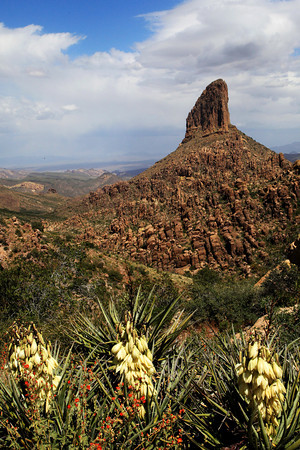 Weaver's Needle near Mesa, Arizona