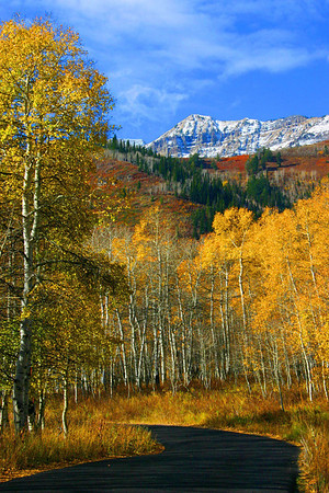 Alpine Loop in the fall near Salt Lake City, Utah