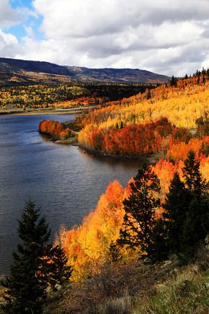 Fall Aspens At Fish Lake In Utah