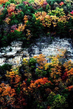 Cloudland Canyon State Park in Georgia