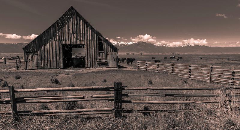 Barn Northern Nevada 5-20-17_V9A2788
