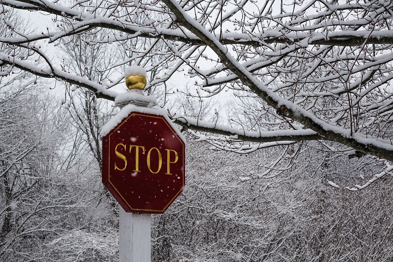 Shot taken down at Greens last week... lacy, pretty snow