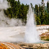 Montana_20090802_385