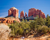 Sedona, Arizona.  Cathedral Rock.  © Rick Collier<br /> <br /> <br /> <br /> <br /> <br /> <br /> <br /> US USA Arizona Sedona Cathedral Rock hiking trail desert tree trees rest calm relax scenic view rocks rocky shore mesa butte mountain