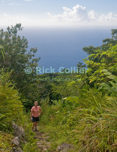 Saba - A scenic view - The view out to the Caribbean sea is truly spectacular whenever we get a glimpse as the Mt. Scenery trail climbs through forest and gets steeper.  © Rick Collier