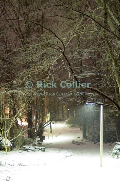 Reston, Virginia, USA.  A streetlight illuminates snow falling on a walking path at night.  © Rick Collier<br /> <br /> <br /> Reston Virginia USA snow snowfall light streetlight after dark cold winter path walkway illumination