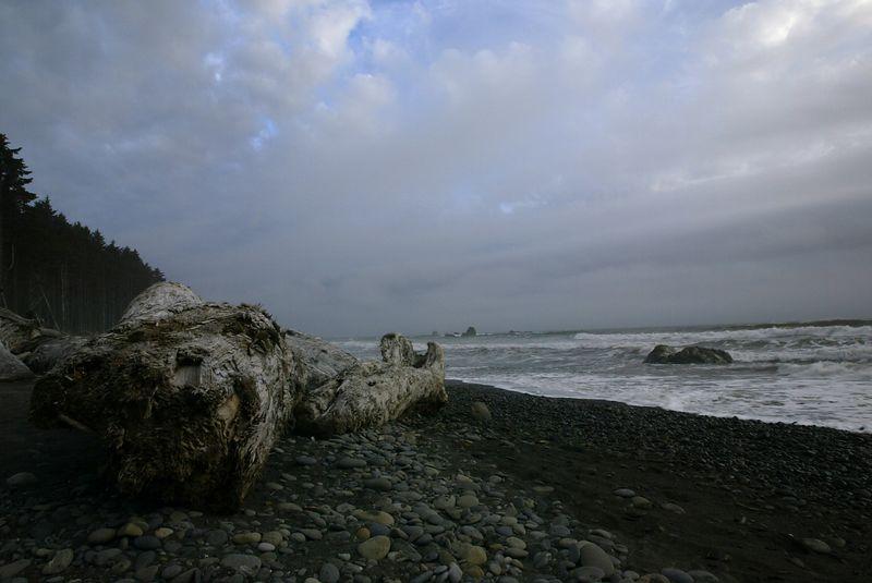 Washington State 2003 - Coastal <br>Copyright 2003 Adam Brown