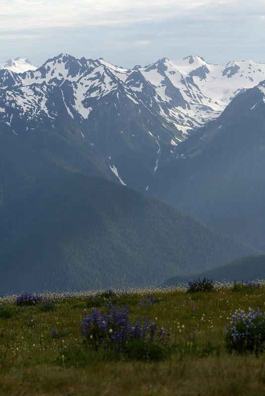 Washington State 2003 - Mountains <br>Copyright 2003 Adam Brown