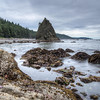 Tide pools at Rialto Beach