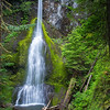 Marymere Falls near Lake Crescent.