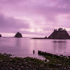 La Push at sunset.