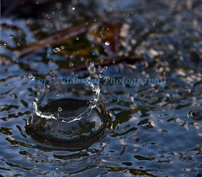 Waterdrop: Majestic crown of a water formed from a single drop