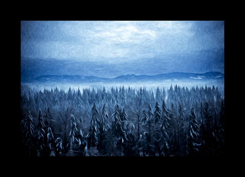 Ice Trees, Auburn Wa, 12x18 only, $220.