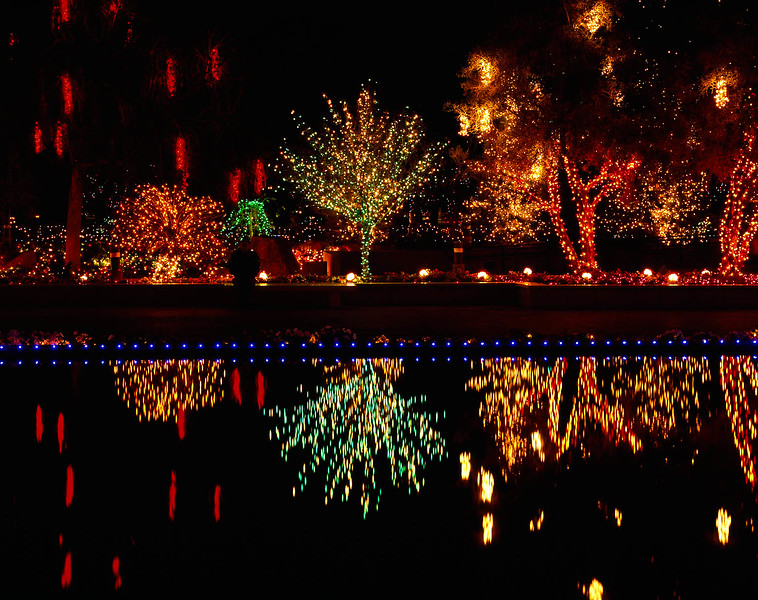 A reflection of the Morman Temple in Mesa, AZ decorated for Christmas.