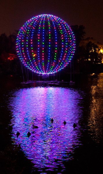 This light ball was part of the 2011 Zoolights at the Phoenix Zoo.  The lights kept changing colors and patterns, and it appears the ducks were enjoying the show.