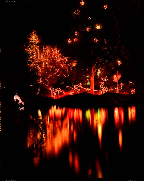 Looking across part of the lake at Zoolights