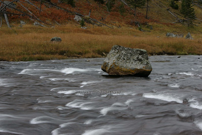 Gibbon River, Yellowstone National Park